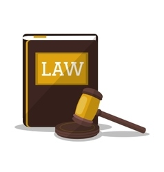 Book and hammer of law and justice design vector