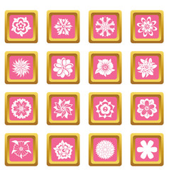 different flowers icons pink vector image