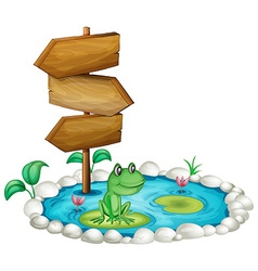 Frog and wooden sign at the pond vector image