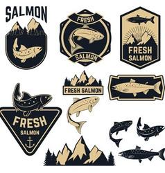 Fresh salmon vector