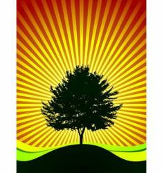 Tree on shine background vector