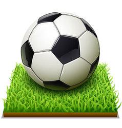 soccer-icon vector image