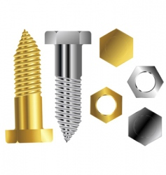 screws vector image
