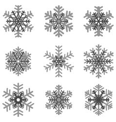 Different gray snowflakes vector
