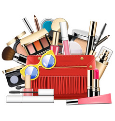 cosmetic bag vector image