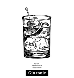 Hand drawn sketch cocktail gin tonic vintage vector