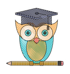 Silhouette color section of knowledge owl with vector