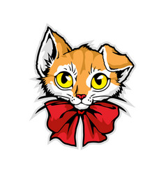 Mascot cartoon character in vector