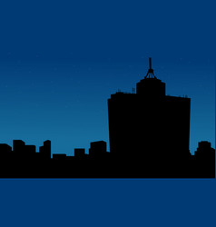 mexico city at night scenery silhouettes vector image