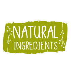Natural ingredients hand drawn isolated label vector