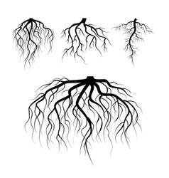 tree underground roots plant underground vector image vector image