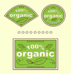 Organic green eco food labels vector