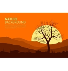 Landscape with old tree over sun vector