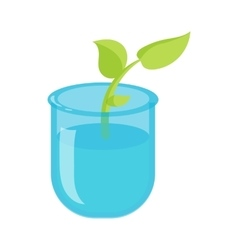 Green sprout in a glass with water icon vector