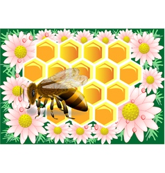 beeswax with bee vector image