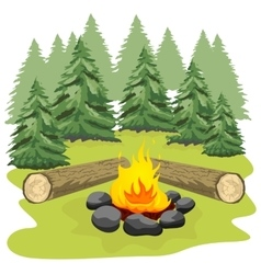 Campfire with stones and wooden logs vector image
