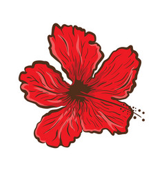 Hibiscus flower in tattoo style graphic tropical vector