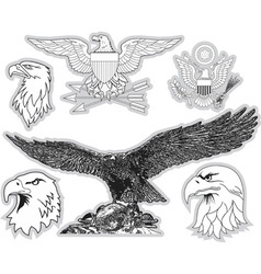 Set of us eagles grayscale collection vector