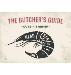 Cut of meat set Poster Butcher diagram and scheme vector image vector image