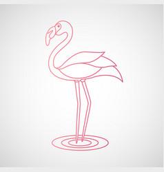 Flamingo logo vector