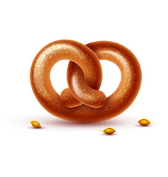 Pretzel baking bread isolated vector
