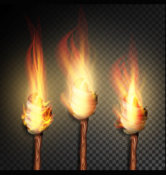 Torch with flame burning in the dark transparent vector