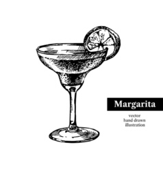 Hand drawn sketch cocktail margarita vintage vector