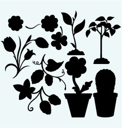 Set plants vector
