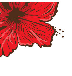 Greeting card hibiscus flower in tattoo style vector