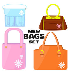 woman bags collection vector image vector image