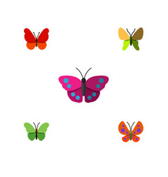 Flat moth set of moth monarch milkweed and other vector