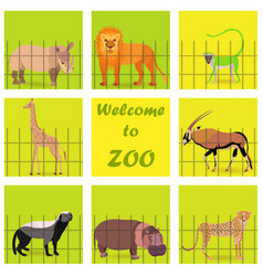 Set with zoo animals vector