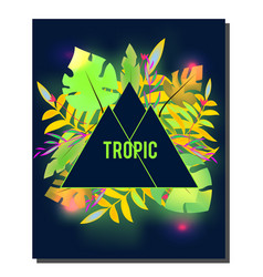 tropic flyer design template tropical leaves with vector image vector image