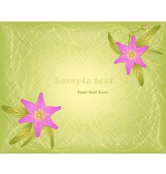 Hatch background with floral ornament and pink vector