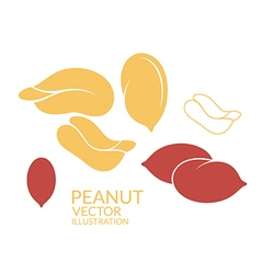 Peanut icon set vector