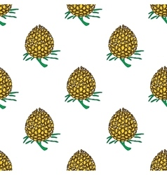 Golden young pineapple on light background vector