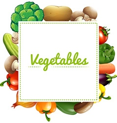 Variouse type of vegetables vector