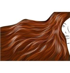 Beautiful brown hair vector
