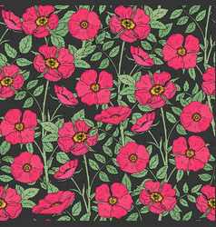 floral seamless pattern with blooming dog roses vector image vector image