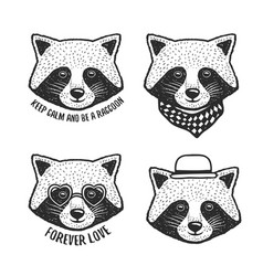 Hand drawn cartoon raccoon head prints set vector