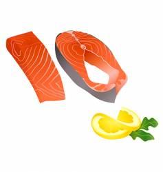 raw salmon slices vector image