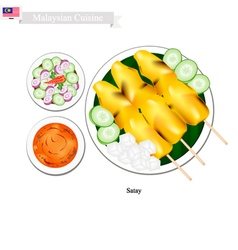 Satay or malaysian style barbecue vector