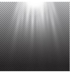 Light effect rays burst light on transpare vector