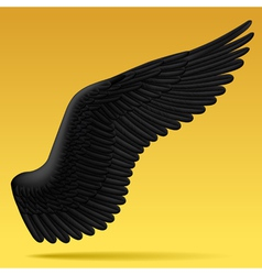 Black wing vector image