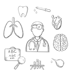 Human organs and medical sketch icons vector