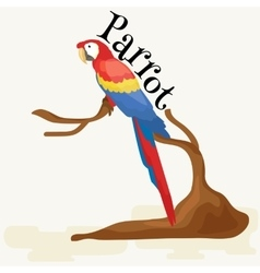 Domestic animal isolated macaw parrot with beak vector