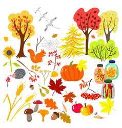autumn elements vector image