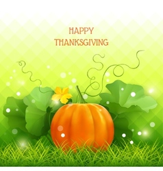 Pumpkin thanksgiving card vector