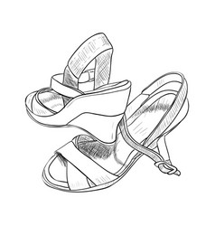sketch of female shoes vector image