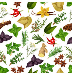 Spice and herb seamless pattern background vector